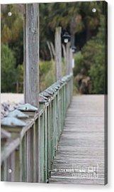 Hilton Beachway Acrylic Print