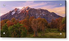 Hint Of Fall Acrylic Print by Chad Dutson