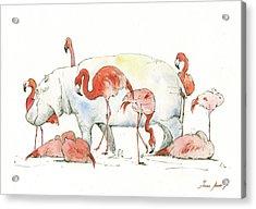 Hippo And Flamingos Acrylic Print