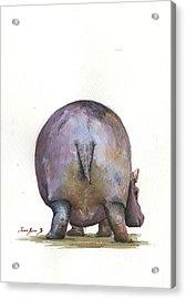 Hippo Back Acrylic Print