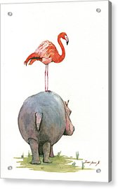 Hippo With Flamingo Acrylic Print