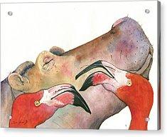 Hippo With Flamingos Heads Acrylic Print