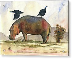 Hippo With Guineafowls Acrylic Print