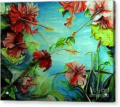 Hiroko's Hibiscus 4 Acrylic Print