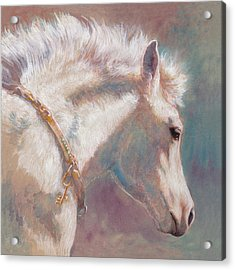 His Coat Reflects The Sky Acrylic Print by Tracie Thompson