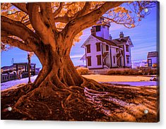 Historic Fermin Point Lighthouse In Infrared Acrylic Print by Randall Nyhof