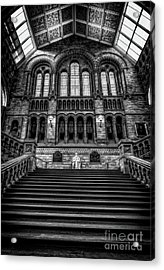 History Museum London Acrylic Print