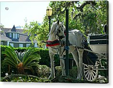 Hitched And Ready Acrylic Print by Bruce Gourley