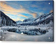 Hoar Frost Acrylic Print by Ed Boudreau