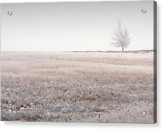 Hoarfrost Pasture Acrylic Print by Fred Lassmann