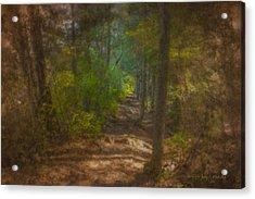 Hobbit Path Acrylic Print