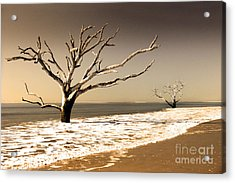Acrylic Print featuring the photograph Hold The Line by Dana DiPasquale