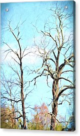 Acrylic Print featuring the photograph Holding Hands And Growing Old Together by Kerri Farley