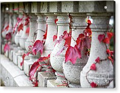 Holding On  Acrylic Print by A New Focus Photography