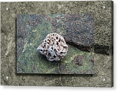 Holey Stone 2 Acrylic Print by WB Johnston