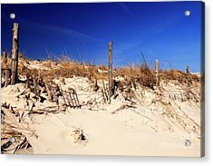 Holgate Beach Dune On Long Beach Island Acrylic Print by John Rizzuto