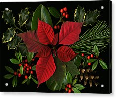 Holiday Greenery Acrylic Print by Deborah J Humphries