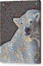 Holiday Hearts Polar Bear Number Two Acrylic Print