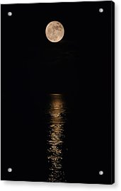 Holiday Magic - Lunar Art Acrylic Print
