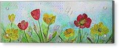 Holland Tulip Festival I Acrylic Print