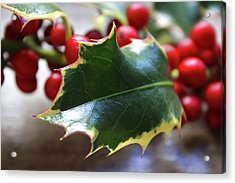 Holly Berries- Photograph By Linda Woods Acrylic Print by Linda Woods