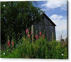 Hollyhock Barn Acrylic Print