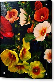 Hollyhocks Acrylic Print by Dana Redfern