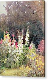 Hollyhocks Acrylic Print by Helen Allingham