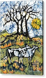 Holsiein Cows Below Autumn Trees Acrylic Print