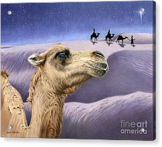 Holy Night Acrylic Print by Sarah Batalka