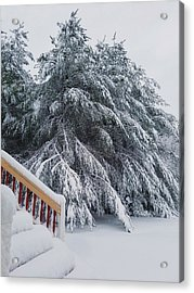 Home For The Blizzard Acrylic Print