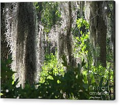 Home Acrylic Print by Greg Patzer