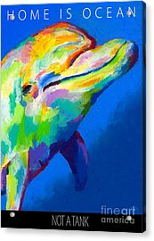 Home Is Ocean Acrylic Print by Stephen Anderson