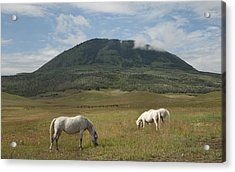 Acrylic Print featuring the photograph Home On The Range by Daniel Hebard