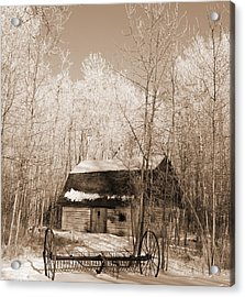 Acrylic Print featuring the photograph Homestead by Pat Purdy