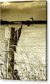 Homeward Bound Acrylic Print