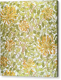 Honeysuckle Design Acrylic Print by William Morris