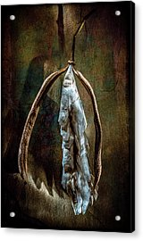 Acrylic Print featuring the photograph Hong Kong Orchid Seed Pod 1 by Lou Novick