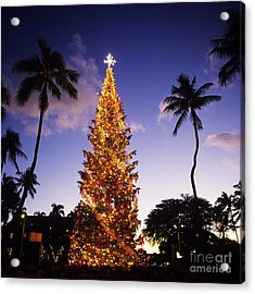 Honolulu Christmas Acrylic Print by Kyle Rothenborg - Printscapes