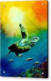 Honu Hawaiian Sea Turtle #154  Acrylic Print by Donald k Hall