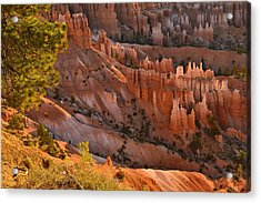 Acrylic Print featuring the photograph Hoodoos At Sunrise by Stephen  Vecchiotti