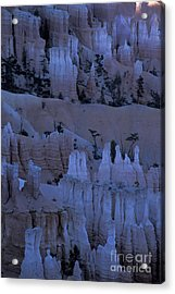 Hoodoos Before Dawn Acrylic Print by Stan and Anne Foster