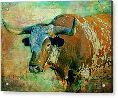 Hook 'em 1 Acrylic Print by Colleen Taylor
