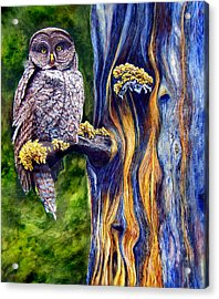 Hoo's Look'n Acrylic Print by JoLyn Holladay