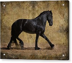 Hooves Of Thunder Acrylic Print