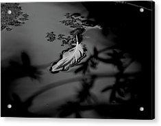 Hope - Bw Acrylic Print by Marilyn Wilson