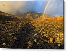 Hope From Desolation Acrylic Print by Mike  Dawson