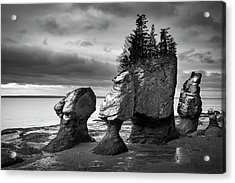 Acrylic Print featuring the photograph Hopewell Rocks by Patrick Downey