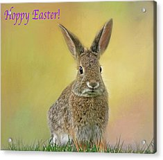 Acrylic Print featuring the photograph Hoppy Easter  by Donna Kennedy
