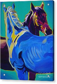 Horse - Friendship Acrylic Print by Alicia VanNoy Call